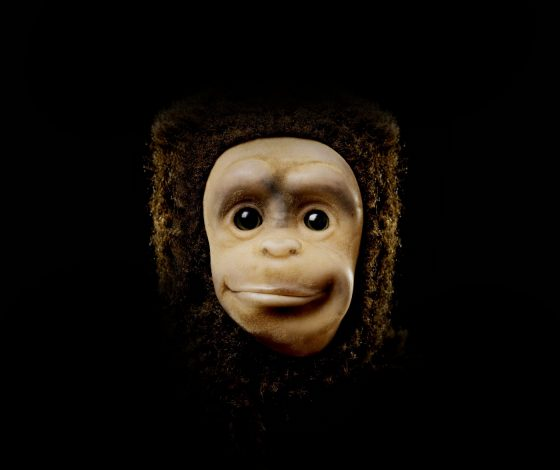 headshot of a plush slightly smiling monkey, black background